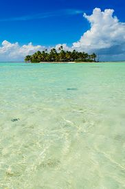picture of french polynesia  - Uninhabited or desert island in the Blue Lagoon inside Rangiroa atoll an island of the Tahiti archipelago French Polynesia in the Pacific Ocean - JPG
