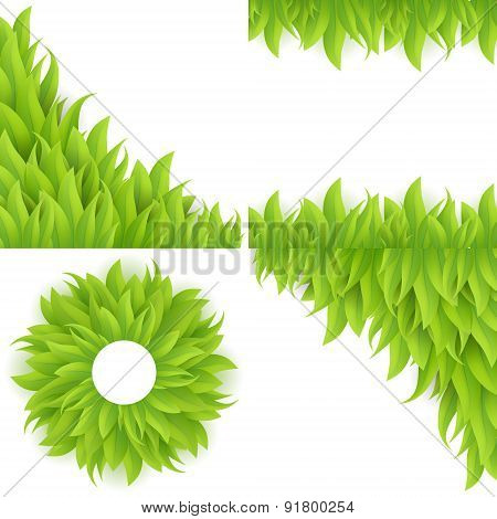 Green grass background set