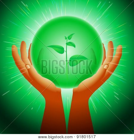 Ball Magic Ecology Plants Hand Flash Light Background