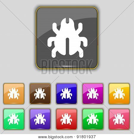 Software Bug, Virus, Disinfection, Beetle Icon Sign. Set With Eleven Colored Buttons For Your Site.