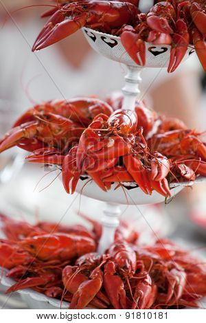 Having a summer party with lots of crayfish