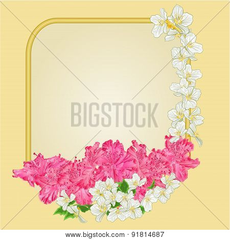 Golden Frame Rhododendron And Jasmine Vector