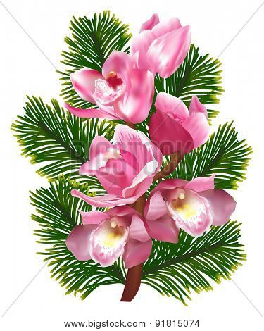 illustration with pink orchid isolated on white background