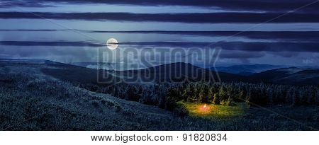 Bonfire In Coniferous Forest On A  Mountain Hill At Night