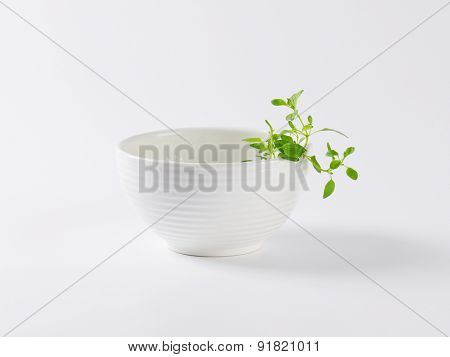 empty bowl with pieces of fresh herbs