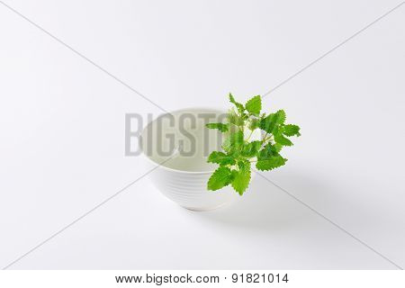 empty bowl with piece of lemon balm on the side