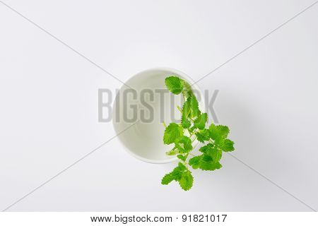overhead view of empty bowl with lemon balm leaves on the side