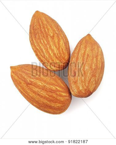 Three Fresh Almond Nuts on White Background