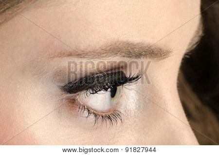 Beautiful Green Eye Macro Shoot