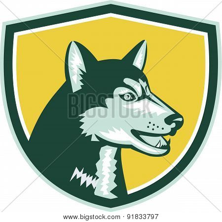 Siberian Husky Dog Head Crest Retro