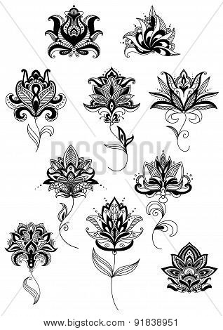 Outline paisley flowers with lush blooms