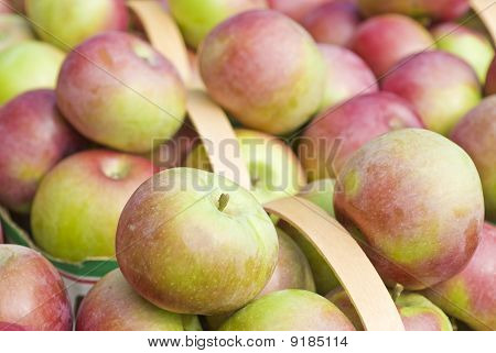 Fresh Macintosh Apples in a Market