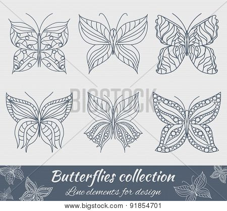 Collection Of Butterflies For Design