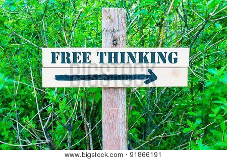 Free Thinking Directional Sign
