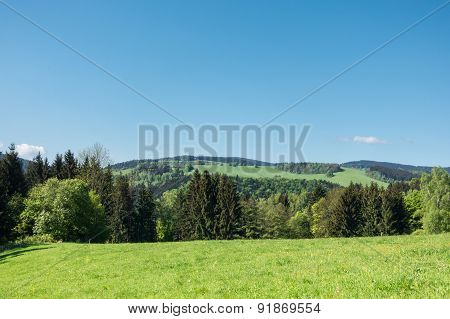Spring Countryside With Pastures, Trees And Blue Sky