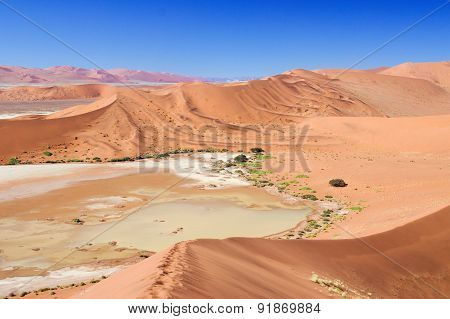 Beautiful sunrise dunes, african landscape of Namib desert, Sossusvlei, Namibia, South Africa