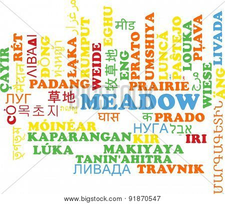 Background concept wordcloud multilanguage international many language illustration of meadow
