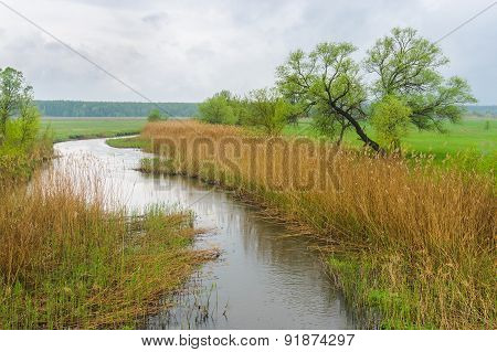 Spring landscape with river Merla in Ukraine