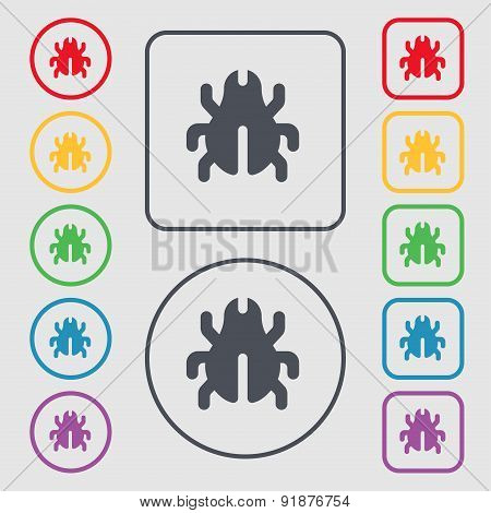 Software Bug, Virus, Disinfection, Beetle Icon Sign. Symbol On The Round And Square Buttons With Fra