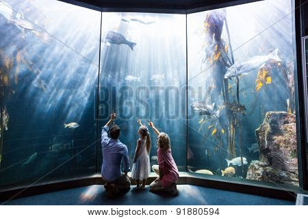 Family pointing a fish in the tank