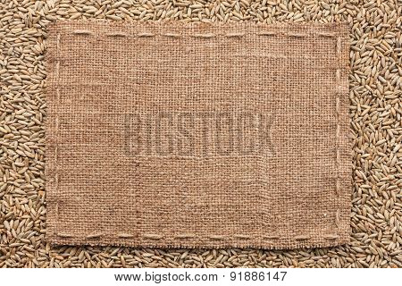 Classical Frame On Rye Grain