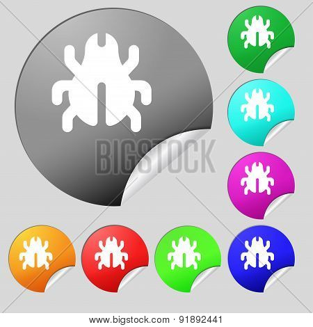 Software Bug, Virus, Disinfection, Beetle Icon Sign. Set Of Eight Multi-colored Round Buttons, Stick
