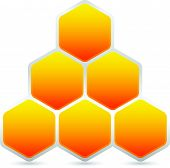 picture of honeycomb  - Hexagonal honeycomb beehive element isolated on white - JPG