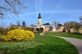 foto of yellow castle  - palace with church and castle on the hill in spring - JPG