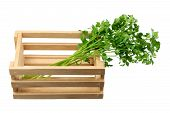 stock photo of wooden crate  - Bunch of Parsley in Wooden Crate on White Background - JPG