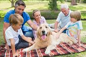 foto of dog park  - Happy family in the park with their dog on a sunny day - JPG