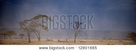 Landscape of Serengeti National Park, Serengeti, Tanzania