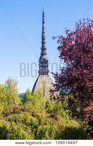 The Mole Antonelliana a major landmark building in Turin Italy