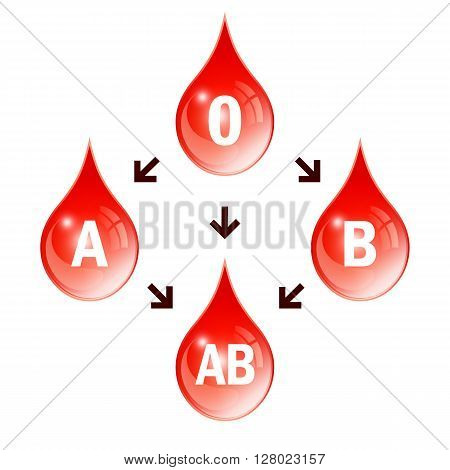 Blood compatibility icon isolated on white background