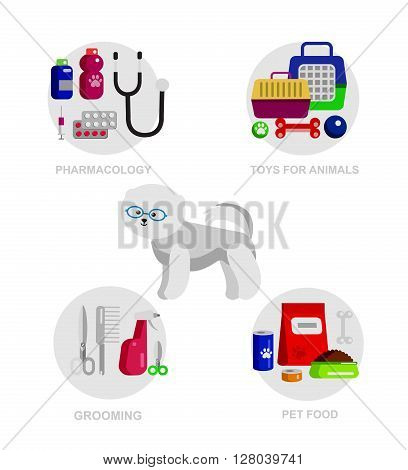 character dog, pet shop. Pets accessories and vet store, grooming tools, Veterinary pharmacy,