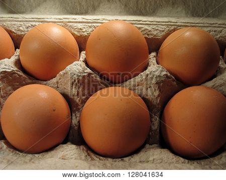 eggs in the original carton closeup .