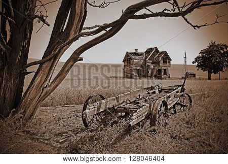 This image is of a old homestead known to be the Nelson homestead in Oregon and considered to be the most photographed in the state, in a Sepia filter.