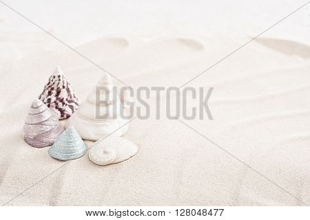 White sand with different seashells, high key