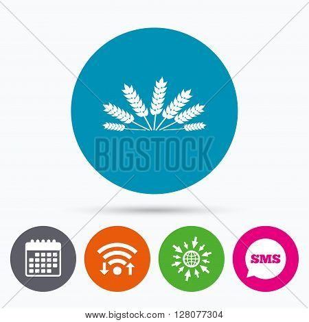 Wifi, Sms and calendar icons. Agricultural sign icon. Wheat corn. Gluten free or No gluten symbol. Go to web globe.