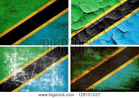 Tanzanian flag collection. 4 different flags on white background