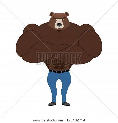 Strong Bear With Big Muscles. Powerful Wild Beast Bodybuilder. Forest Animals In Jeans. Athlete Mons