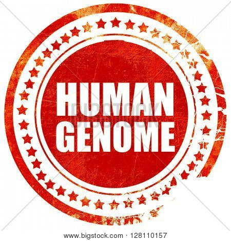 human genome, red grunge stamp on solid background