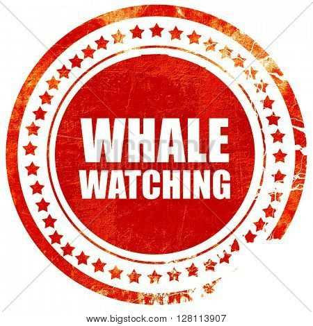 whale watching, red grunge stamp on solid background