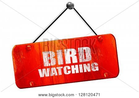 bird watching, 3D rendering, vintage old red sign