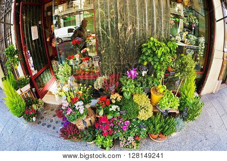 MADRID, SPAIN - NOVEMBER 11, 2015 : flower shop in the neighborhood of Chueca in centre of Madrid. Chueca area of Madrid, which is known for its stunning atmosphere and nightlife