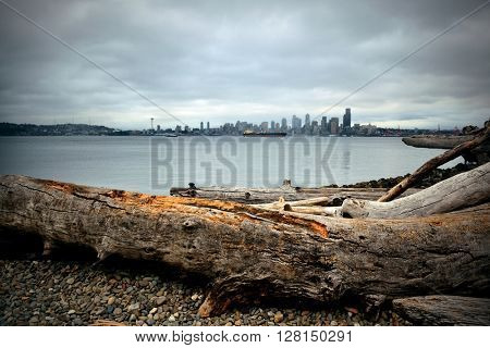 Seattle city skyline view over sea with urban architecture and tree log.