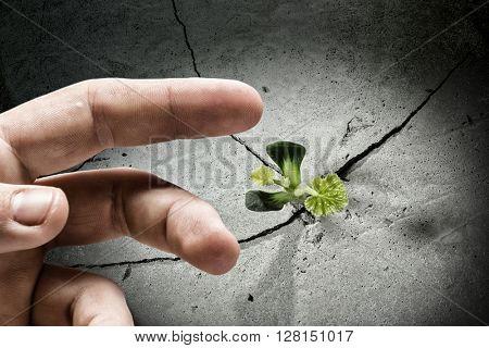 Creating new life
