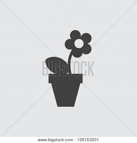 Flowerpot icon illustration isolated vector sign symbol