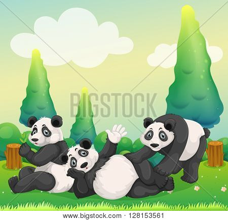 Three pandas playing in the park illustration