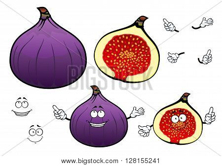 Whole and half of honey sweet fig fruit cartoon characters with cheerful smiling faces. Great for confectionery recipe, vegetarian dessert, agriculture design