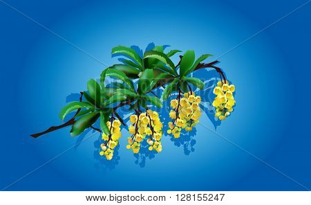 illustration with spring yellow flowers on blue background
